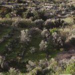 L' Observatoire de l'Environnement de Paros