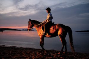 Fanily holidays on Paros, horse riding